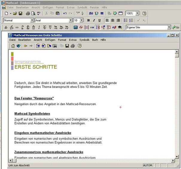Einführung in Computeralgebra-Systeme (CAS)